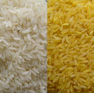 Tiêu chuẩn gạo xuất khẩu của Việt Nam